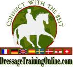 DTO Dressage Training on Line